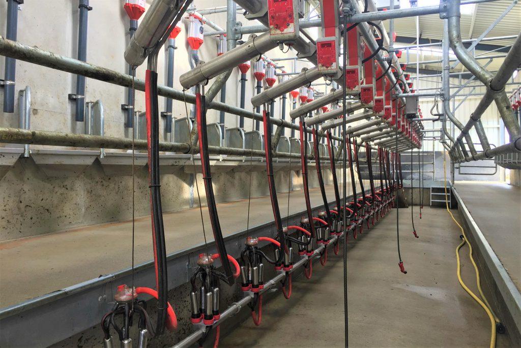 processors co-ops minimum june gdt milk farmers march dairygold gdt coronavirus february milk price