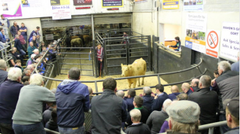 People with no business in marts asked not to attend for time being