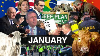 Beef Industry Review: January