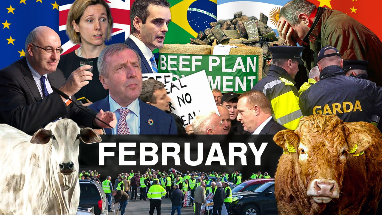 Beef Industry Review: February