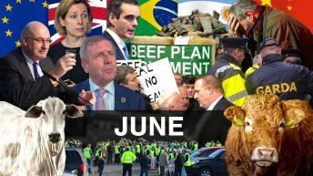 Beef Industry Review: June