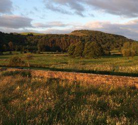 Agri-Food Strategy consultation closes tomorrow