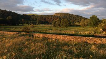 McConalogue opens CAP environmental assessment consultation
