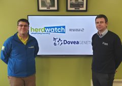 New app from Herdwatch as it enters 'strategic partnership' with Dovea Genetics