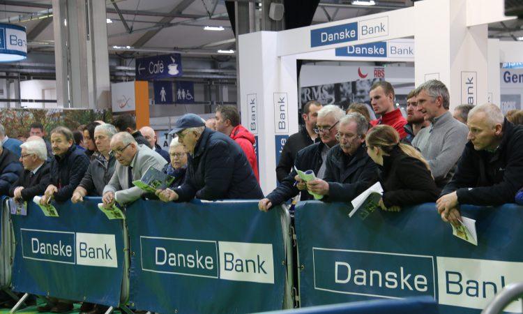 Winter Fair: Crowds flock to Northern Ireland's biggest dairy show