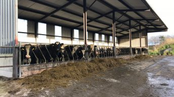Sticking to the plan and implementing a finishing programme in Co. Meath