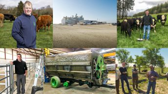 Revisited: The top 10 beef-related feature length articles of 2019