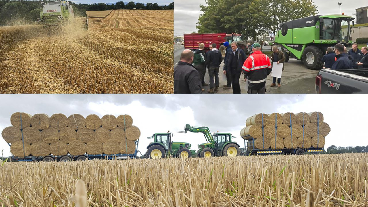 Key moments in the Irish tillage sector in 2019