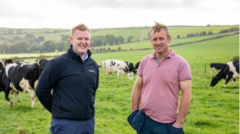 Turning excess Christmas pounds into milk solids this spring