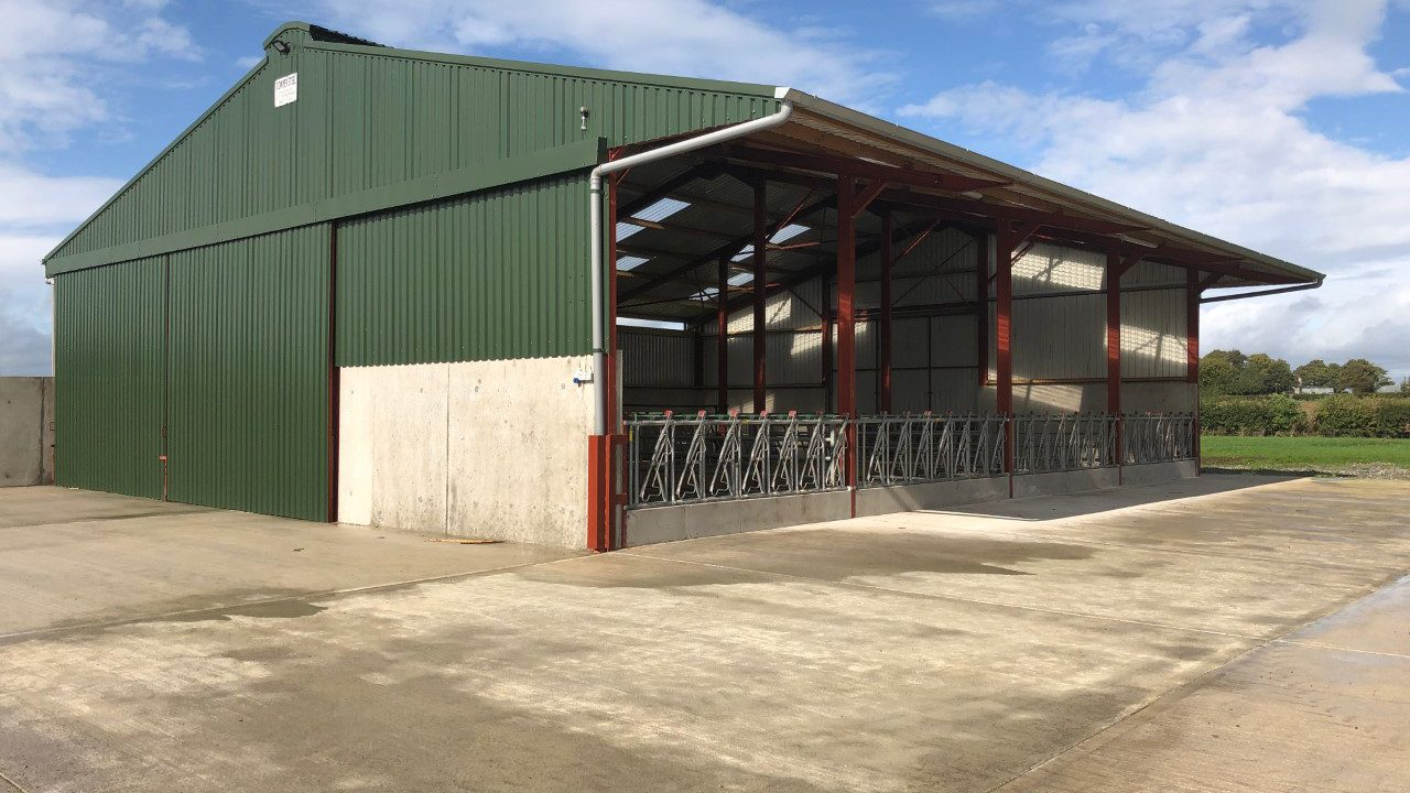Back in focus: Suckler and beef-finishing unit all under the one roof in Co. Kildare