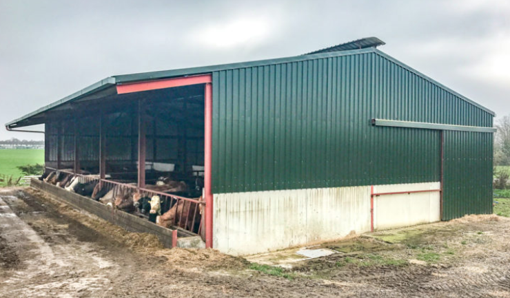 Back in focus: A self-erected beef unit constructed without TAMS in Co. Kilkenny