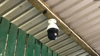 Trying to reduce the workload during springtime? Why not install a camera…