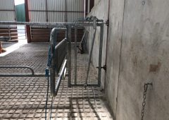 What are the benefits of calving gates?
