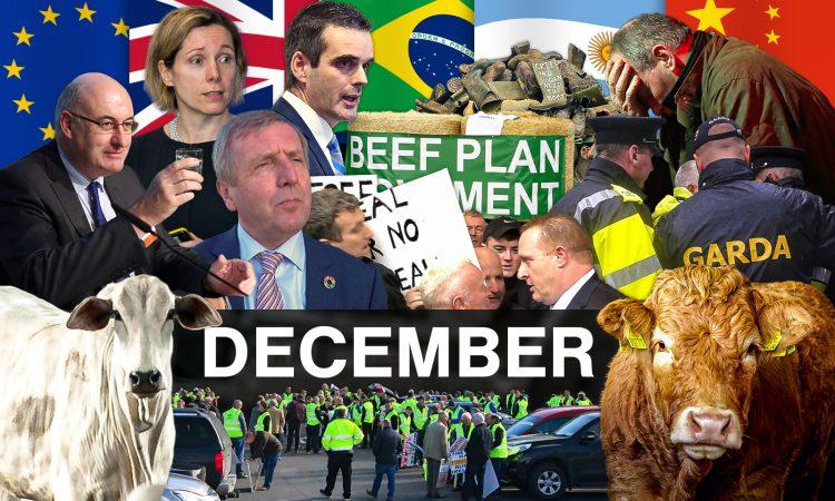 Beef Industry Review: December