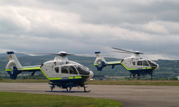 Garda air support on hand in fight against Christmas tree theft