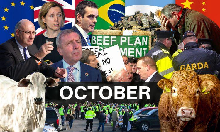 Beef Industry Review: October