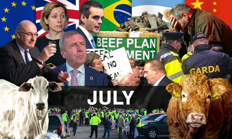Beef Industry Review: July