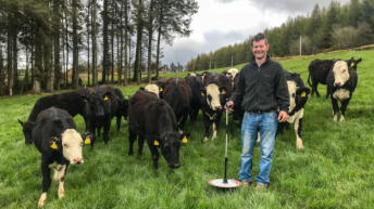 Revisited: How this beef farmer influenced his dairy siblings on sire selection