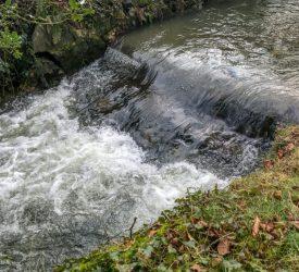 """水质:报告在农业行动中查找""""取得进展"""""""