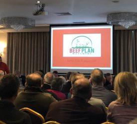 Beef Plan members plan for 'inaugural AGM' in May