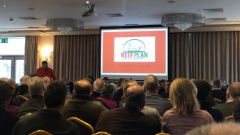 Beef Plan members plan for 'inaugural AGM' in May