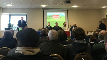 Dairygold announces contract beans price of €205/t for 2020 harvest