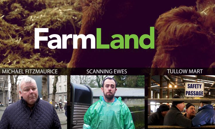 Video: The agri week in focus with FarmLand