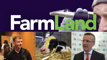 This week's FarmLand: Tim Cullinan; tillage; and tips on colostrum management