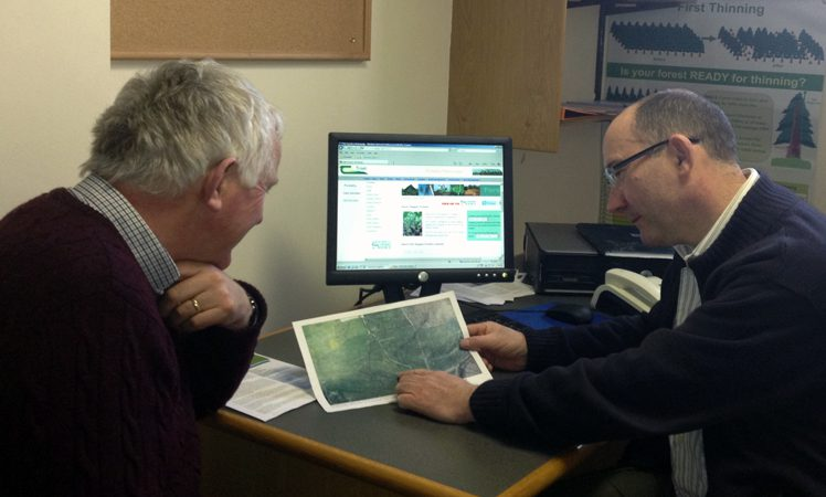 Avail of a free one-to-one consultation with an experienced forestry advisor
