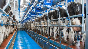 Aurivo announces unchanged milk price for August