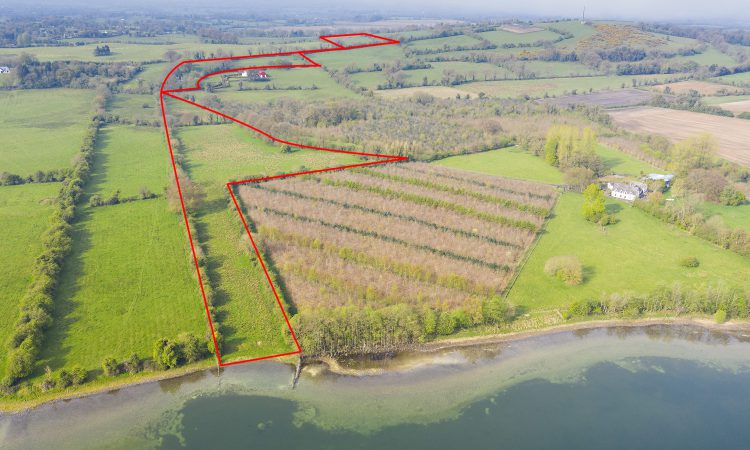 25ac holding on the market situated in 'The Lakeland of Ireland'