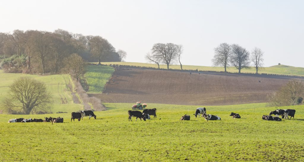 New Agri-Food Strategy: Increased focus on non-farm income