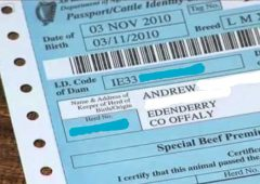 Extra dam data to be included on bovine passports