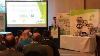 'We need more commercial flocks to start performance recording' – Sheep Ireland's Kevin McDermott