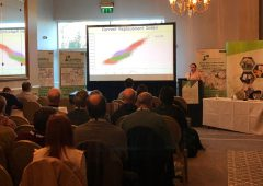 'How many lambs are too many?' – Sheep Ireland conference