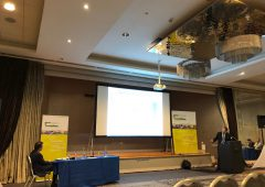 'The sheep industry is economically vitally important' – Michael Diskin of Teagasc