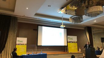 'The sheep industry is economically and vitally important' – Michael Diskin of Teagasc