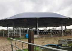 Rearing 600 calves on contract and operating a beef-finishing enterprise in the UK