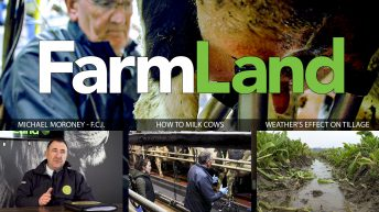 This week's FarmLand: Forestry fiasco, weather woes and top tips on milking