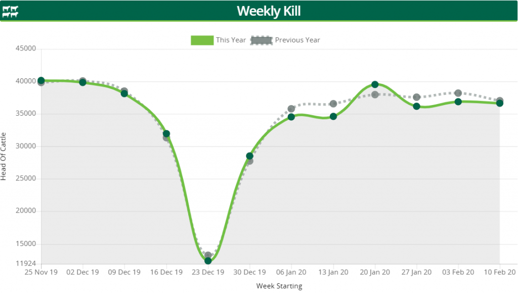 Image-source-AgriLand-Weekly-kill-graph-week-commencing-Feb-10
