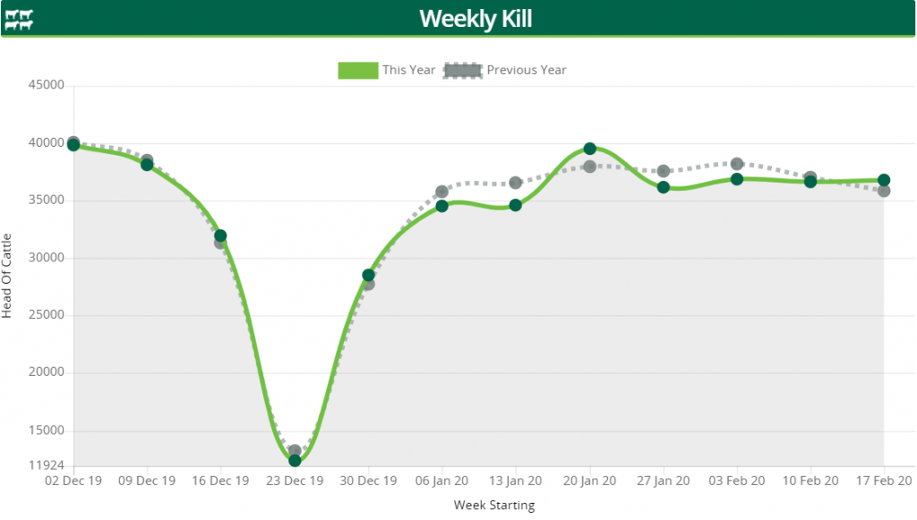 Image-source-AgriLand-Weekly-kill-graph-week-commencing-Feb-17
