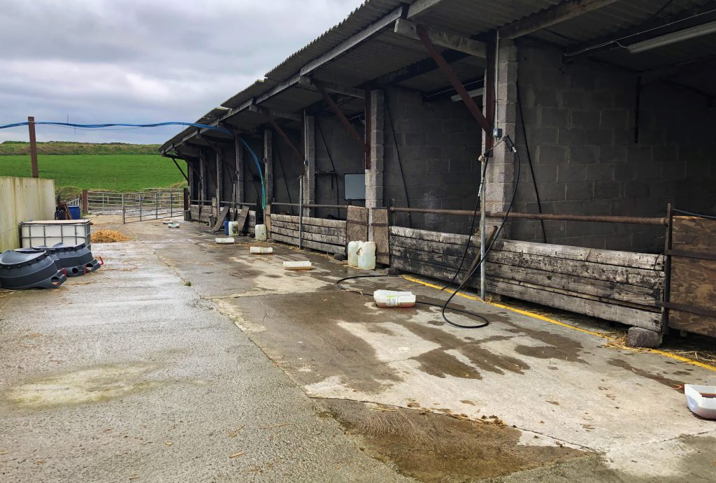Image-source-AgriLand-calf-shed