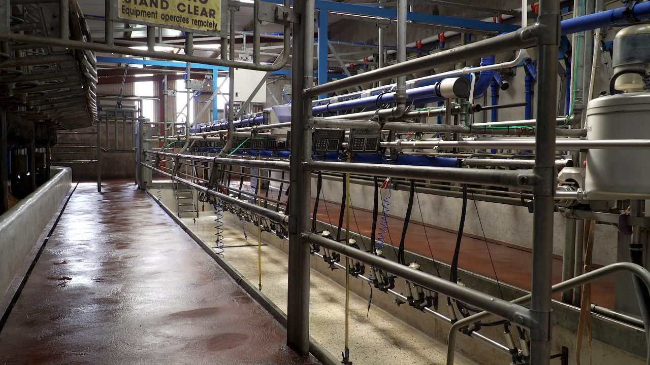 ICMSA expects milk price rise on back of Asian demand