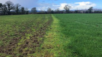 What should I do now if I didn't reach the target area grazed by March 1?