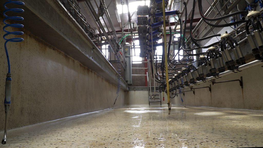 Image-source-AgriLand-milking-parlour north cork