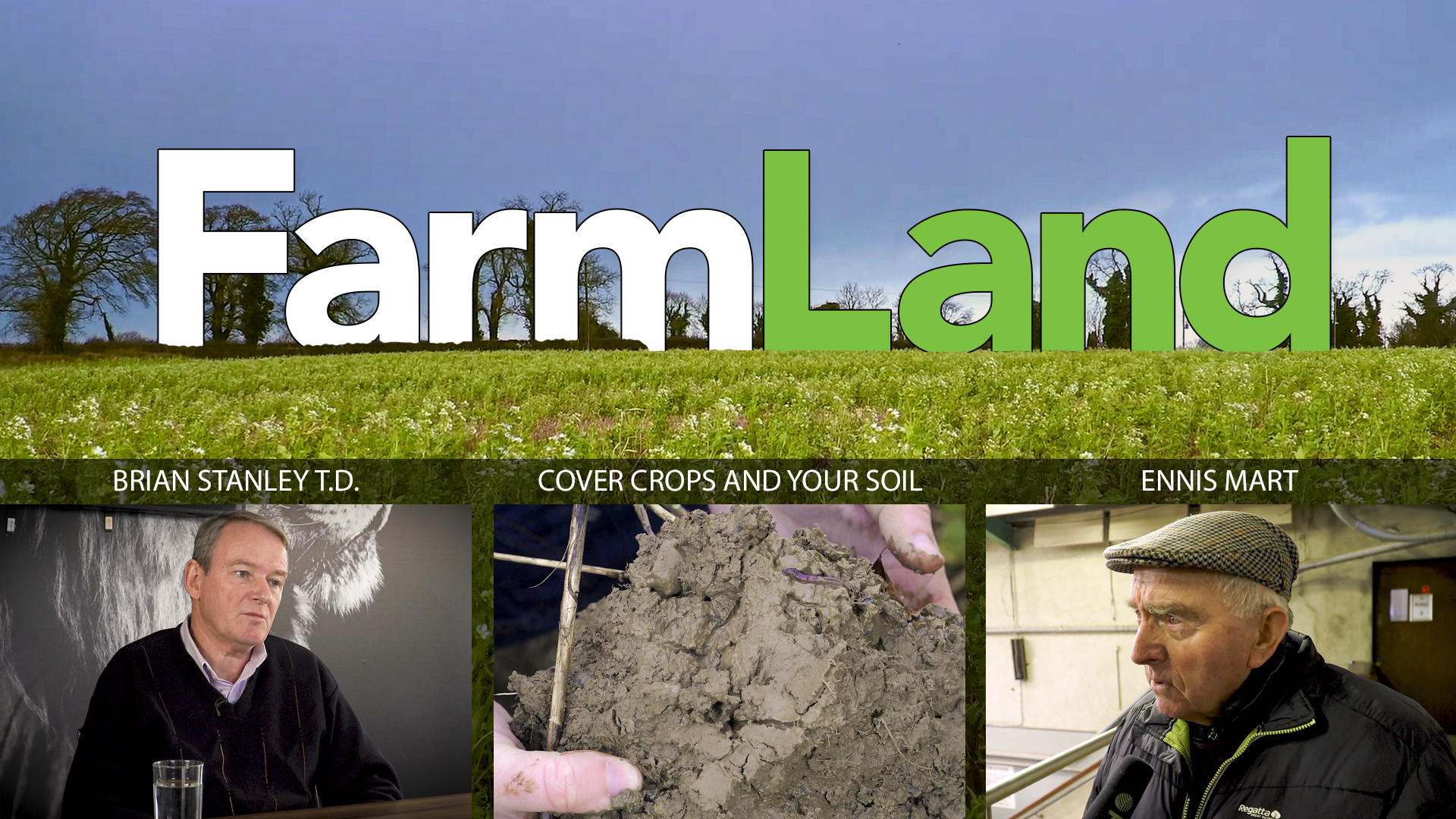 This week's FarmLand: Ennis Mart, cover crops and Sinn Féin on farming