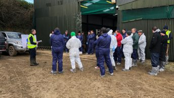Pre-lambing workshop: How important is hygiene?