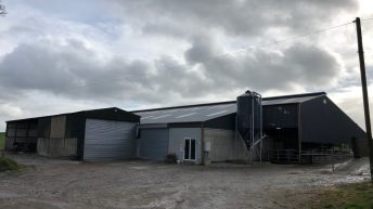 Buildings focus: A 16-unit parlour; drafting area; cubicles; and calf house under one roof