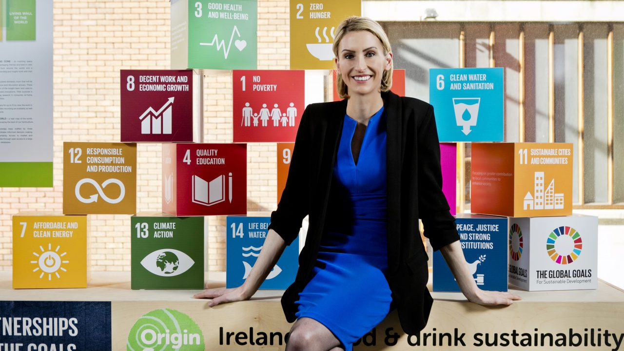 Bord Bia appoints Ryan as director of Origin Green