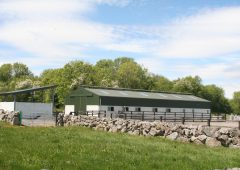 Equestrian property with 'purpose-built facility' up for grabs in Co. Galway
